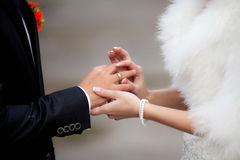 Bride Put the Wedding Ring on groom Stock Photos