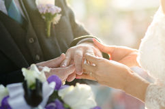 Bride Put the Wedding Ring on groom's hand Stock Image