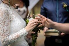 Bride puts wedding ring Stock Images