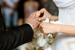 Bride putting the ring on groom's finger. Bride is putting the ring on groom's finger Royalty Free Stock Photo