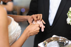 Bride putting a ring on groom's finger Stock Image