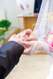 Bride putting a ring on groom's finger Royalty Free Stock Image