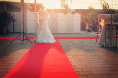 Bride on the red carpet Stock Images