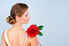The bride with a red rose. Studio portrait of the bride with a red rose on a gray background Stock Image