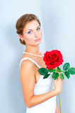 The bride with a red rose. Studio portrait of the bride with a red rose on a gray background Stock Photos