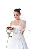 Bride with red rose. Bride in white holding a red rose. Isolated Stock Photography