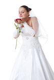 Bride with red rose. Bride in white holding a red rose. Isolated Royalty Free Stock Photo