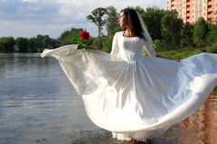 Bride with red rose at pond. Bride with red rose in flying dress at pond Stock Image