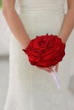 Bride with red rose. Bride in white dress holding a big red rose Stock Image