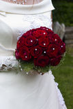 Bride with red roses. And pearls stock image