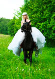 Bride riding a horse Stock Photos