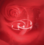 Bride rings. Wedding rings with horses and red rose background Royalty Free Stock Image