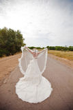 Bride on the road. With veil Royalty Free Stock Images