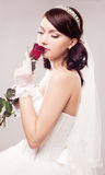 Bride with a rose. Beautiful young bride with a rose,  against grey studio background Stock Photo