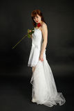 Bride with rose and veil on black background Stock Photography