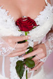 The bride with a rose and wedding rings. The bride holds in a hand a red rose with wedding rings Royalty Free Stock Images
