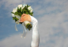 Bride roses royalty free stock images