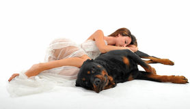 Bride and rottweiler Stock Images
