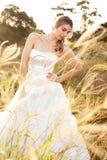 Bride in a Rural Landscape Stock Image