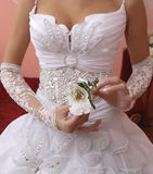 Bride's bouquet. Bride hold the bouquet from orchids Stock Photos