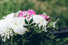 The bride`s bouquet Stock Photos