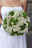 Bride's bouquet, Stock Image