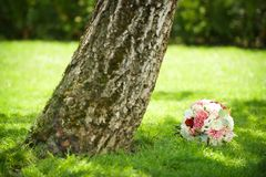 Bride`s bouquet by the tree. Wedding flower placed in grass. A white rose, cantaion and peony, tree trunk royalty free stock photo