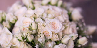 The bride`s bouquet, white roses, tulips, delicate flowers, use as background or texture, soft pastel colors Stock Photo