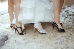 Bride's and Bridesmaid's Legs Stock Images