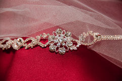 Bride's Diamond Tierra. On her veil and bridesmaids gown Royalty Free Stock Photo