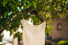 The bride`s dress on a hanger in the green Royalty Free Stock Image