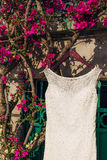 The bride`s dress on a hanger in the green Stock Photography