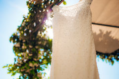 The bride`s dress on a hanger in the green Stock Image
