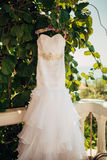 The bride`s dress on a hanger in the green Stock Images