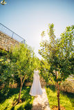 The bride`s dress on a hanger in the green Royalty Free Stock Images