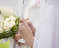 Bride's excitement Royalty Free Stock Image