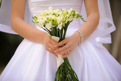 Bride's Fingers Stock Images