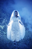 Bride`s ghost in  night forest Stock Images