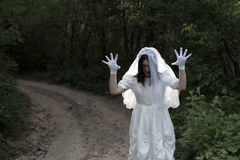 Bride`s ghost in  night forest. Bride`s ghost in the night forest Stock Image