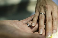 Bride`s and Groom`s hand holding together with the wedding rings stock photography
