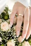 Bride's hand Stock Image