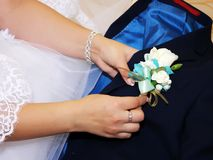 The bride`s hand puts on a boutonniere flower on the groom`s jacket. So close. stock photography