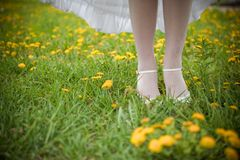 Bride's leg Royalty Free Stock Images