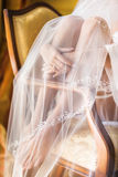 Bride's legs and veil Royalty Free Stock Photo