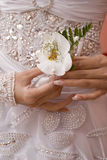Bride's orchid. Blide hold the orchid for the groom royalty free stock image