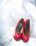 Bride's red shoe Stock Images