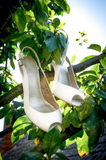 Bride's shoes on a tree branch Royalty Free Stock Images