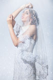 Bride's veil covered. Stock Photos