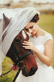 Bride`s veil covers a brown horse head Royalty Free Stock Photo