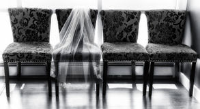 The Bride's Veil. Laying on chairs Stock Photography